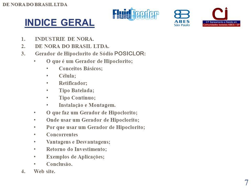 INDICE GERAL INDUSTRIE DE NORA. DE NORA DO BRASIL LTDA.