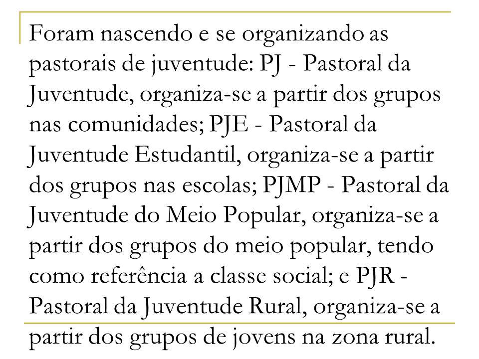 Foram nascendo e se organizando as pastorais de juventude: PJ - Pastoral da Juventude, organiza-se a partir dos grupos nas comunidades; PJE - Pastoral da Juventude Estudantil, organiza-se a partir dos grupos nas escolas; PJMP - Pastoral da Juventude do Meio Popular, organiza-se a partir dos grupos do meio popular, tendo como referência a classe social; e PJR - Pastoral da Juventude Rural, organiza-se a partir dos grupos de jovens na zona rural.