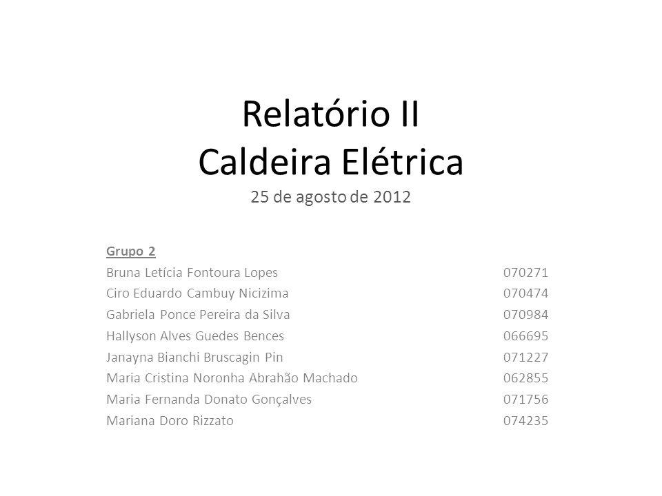 Relatório II Caldeira Elétrica 25 de agosto de 2012