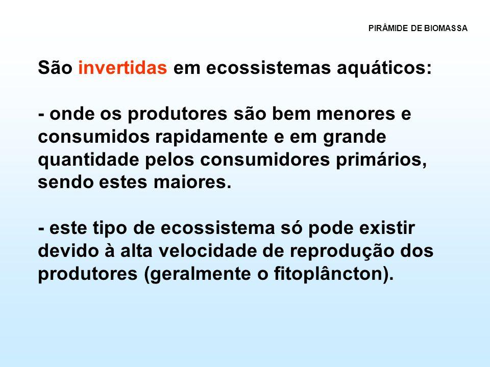 São invertidas em ecossistemas aquáticos: