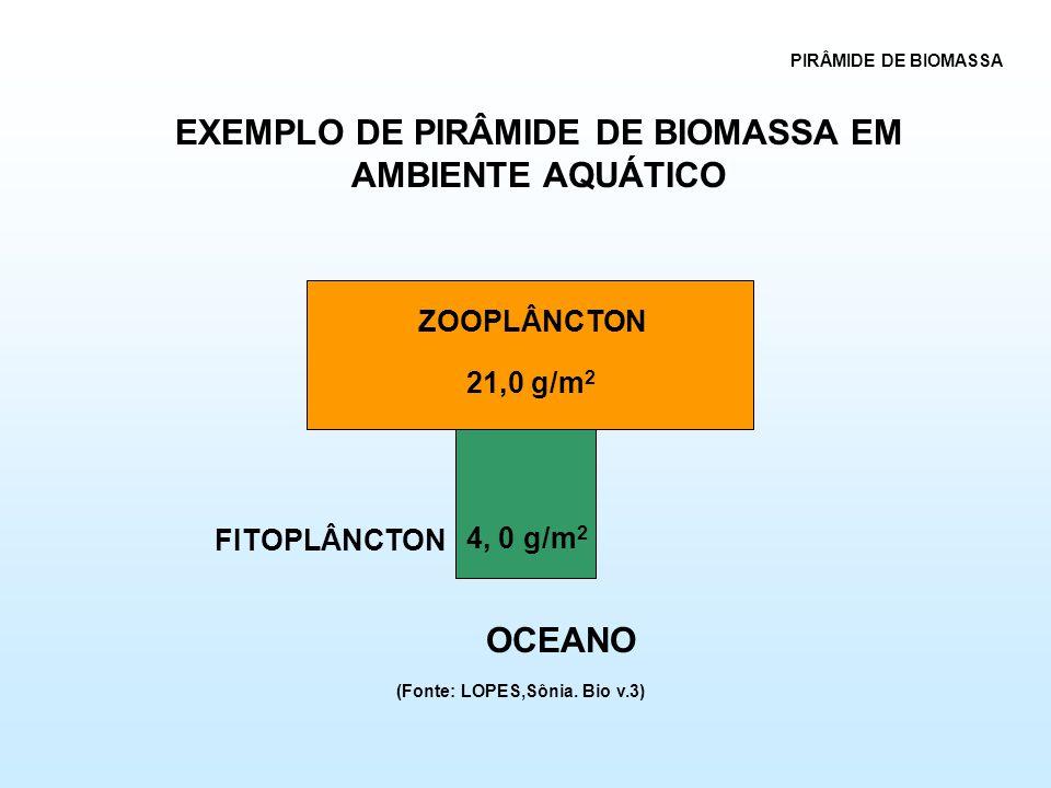 EXEMPLO DE PIRÂMIDE DE BIOMASSA EM AMBIENTE AQUÁTICO