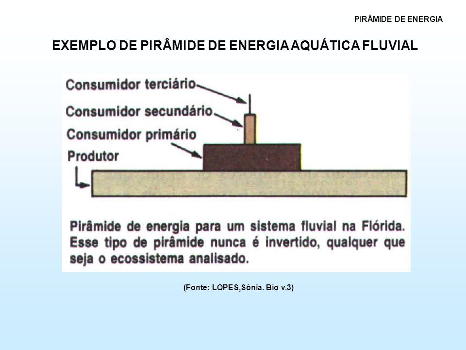 EXEMPLO DE PIRÂMIDE DE ENERGIA AQUÁTICA FLUVIAL