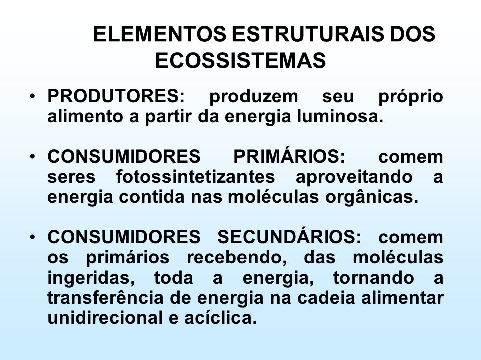 ELEMENTOS ESTRUTURAIS DOS ECOSSISTEMAS