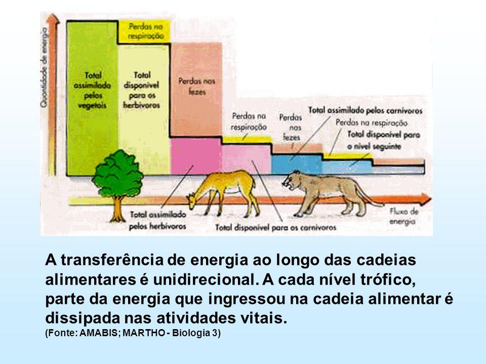 A transferência de energia ao longo das cadeias alimentares é unidirecional. A cada nível trófico, parte da energia que ingressou na cadeia alimentar é dissipada nas atividades vitais.