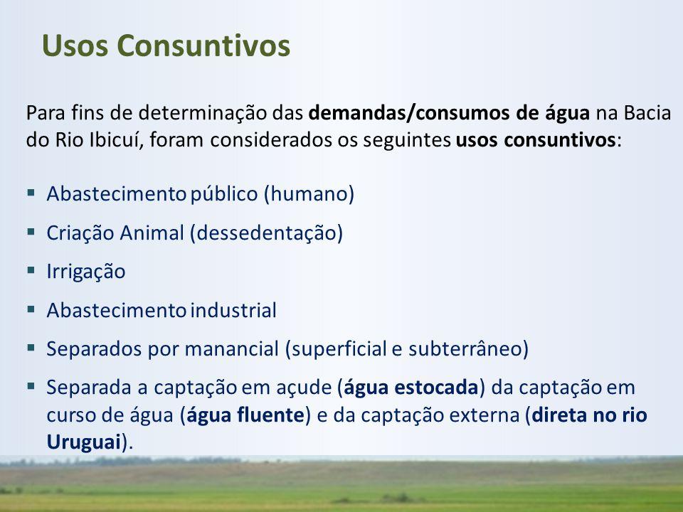 Usos Consuntivos Para fins de determinação das demandas/consumos de água na Bacia do Rio Ibicuí, foram considerados os seguintes usos consuntivos:
