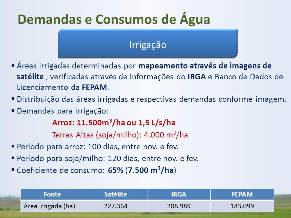 Demandas e Consumos de Água