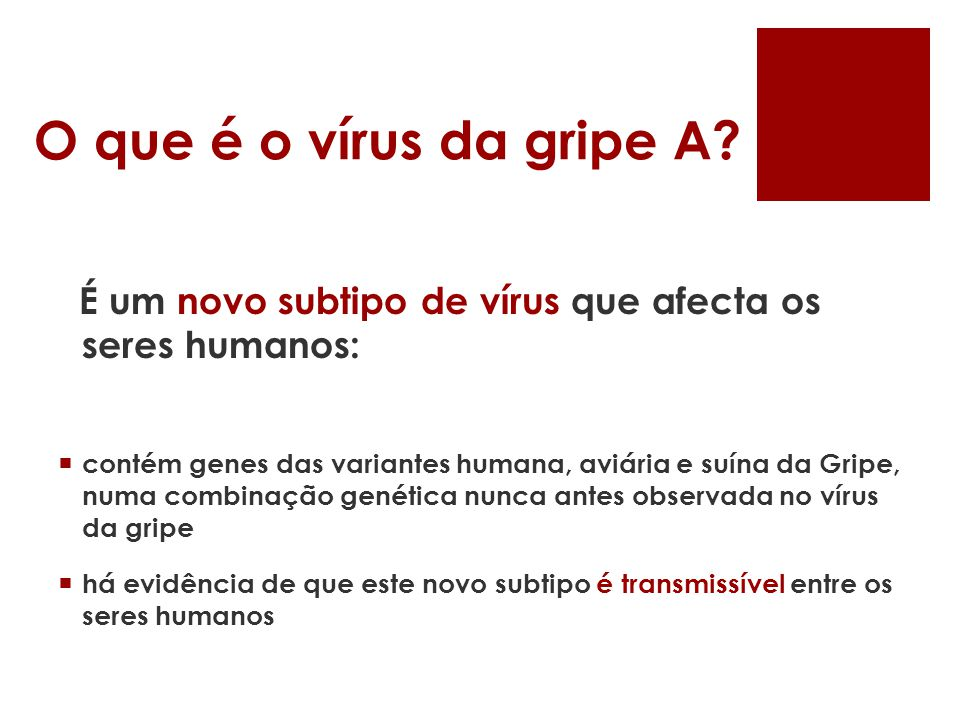 O que é o vírus da gripe A É um novo subtipo de vírus que afecta os seres humanos: