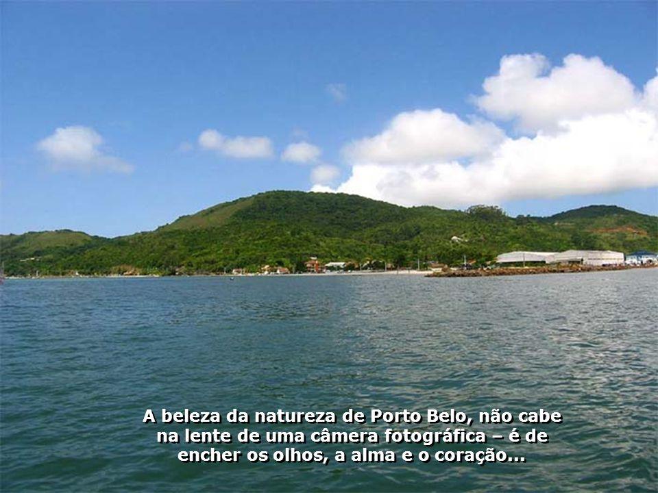 A beleza da natureza de Porto Belo, não cabe