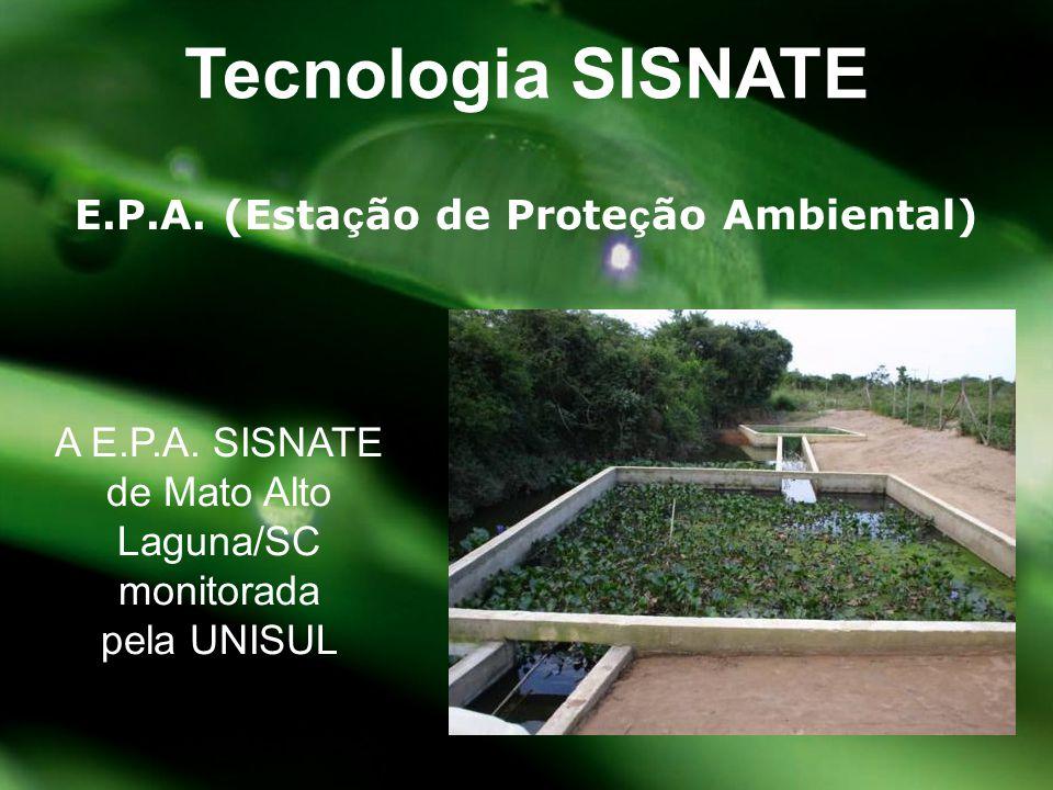 E.P.A. (Estação de Proteção Ambiental)