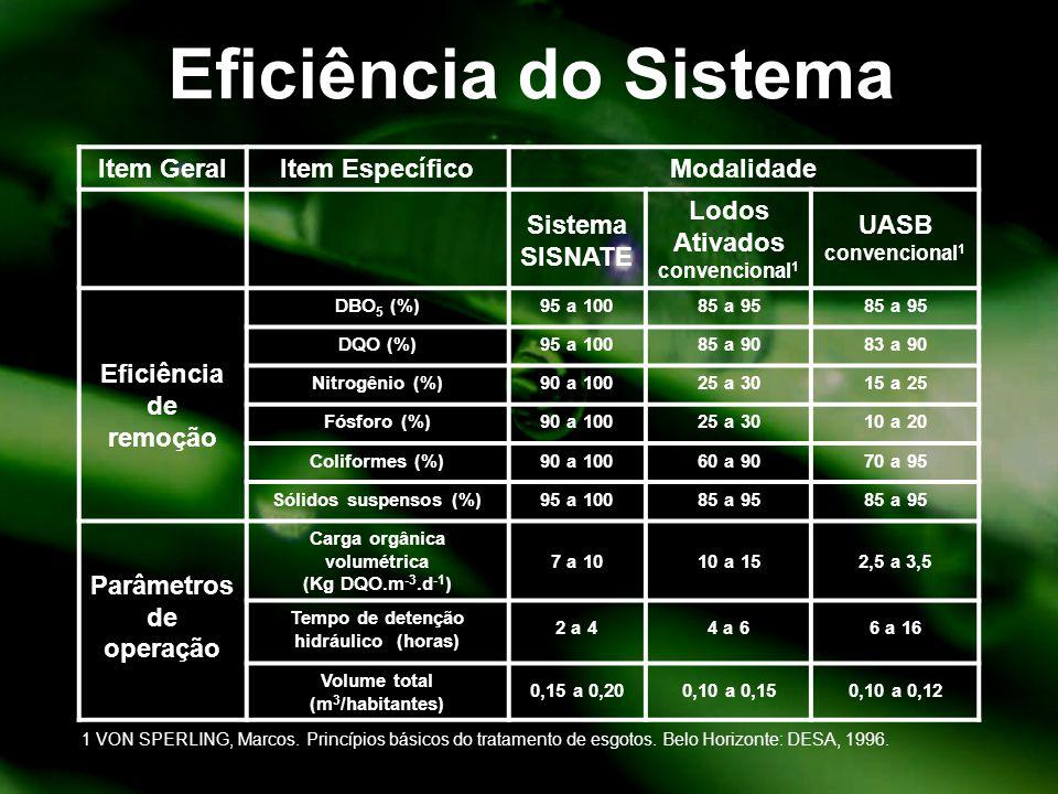 Eficiência do Sistema Item Geral Item Específico Modalidade