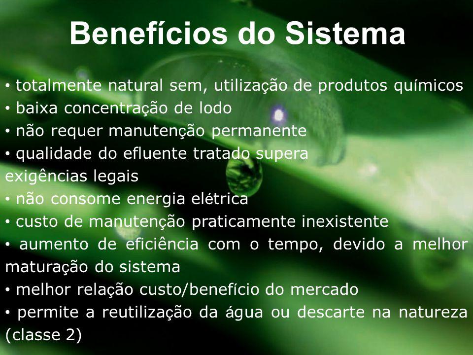 Benefícios do Sistema • totalmente natural sem, utilização de produtos químicos. • baixa concentração de lodo.