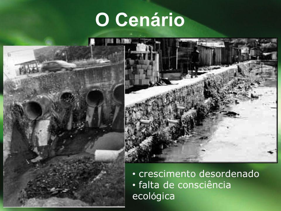 O Cenário • crescimento desordenado • falta de consciência ecológica