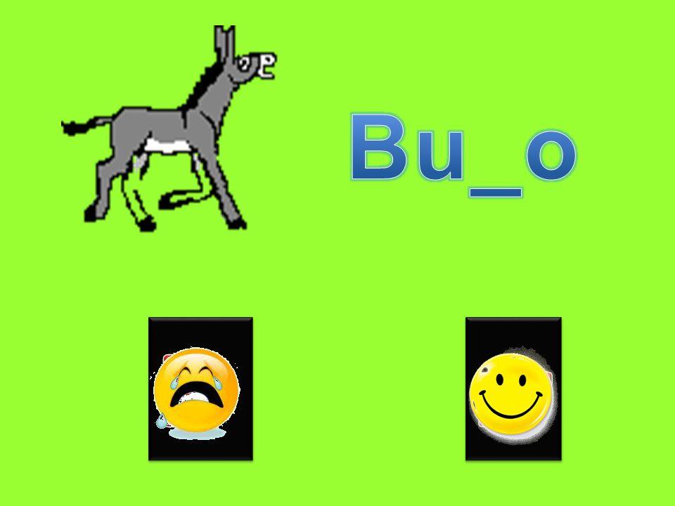 Bu_o R rr
