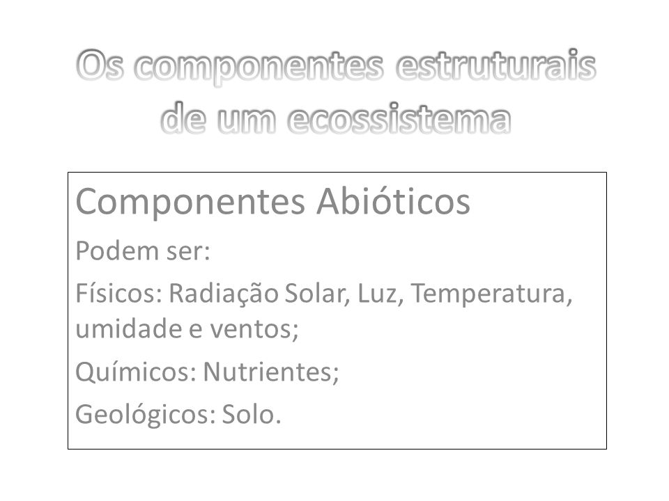 Os componentes estruturais de um ecossistema