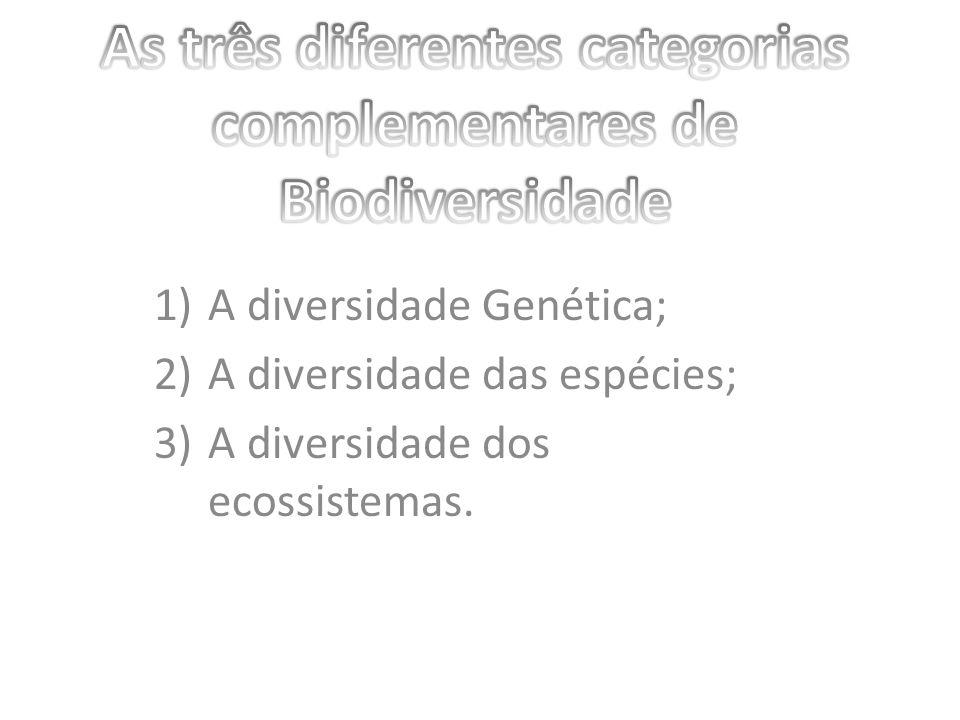 As três diferentes categorias complementares de Biodiversidade
