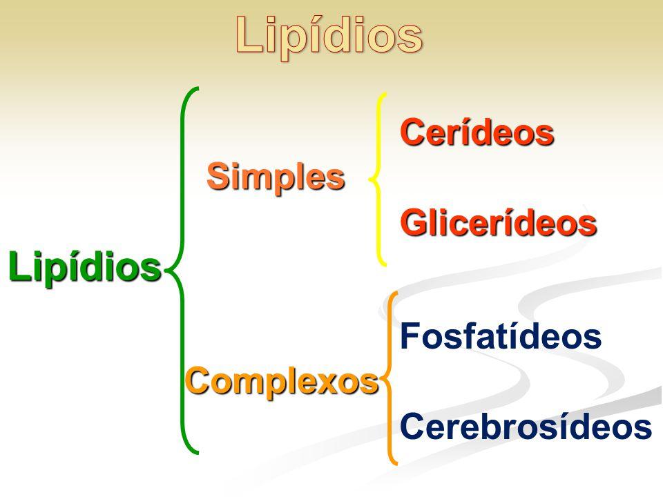 Lipídios Lipídios Cerídeos Glicerídeos Simples Fosfatídeos