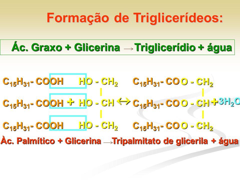 Formação de Triglicerídeos: