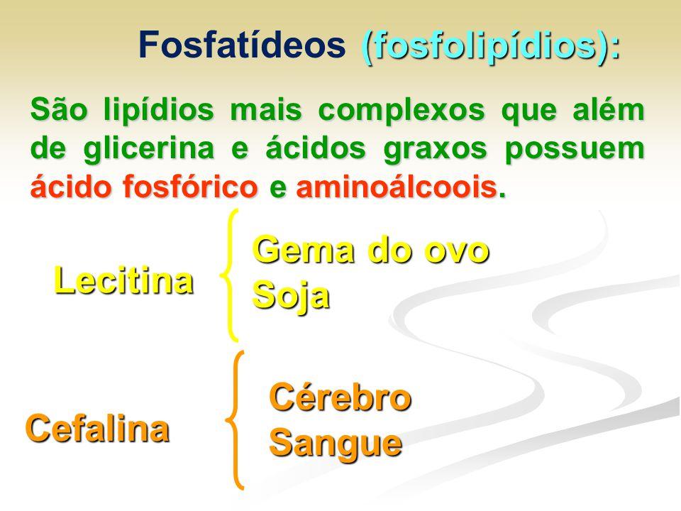 Fosfatídeos (fosfolipídios):