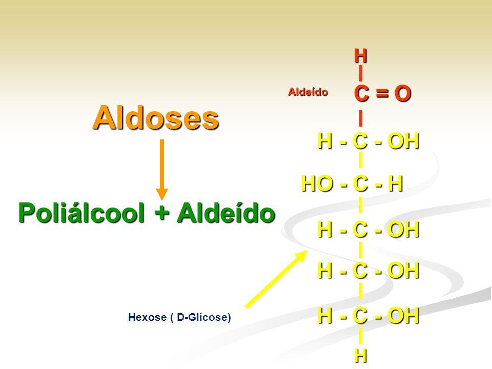 Aldoses Poliálcool + Aldeído C = O H - C - OH HO - C - H C = O H H
