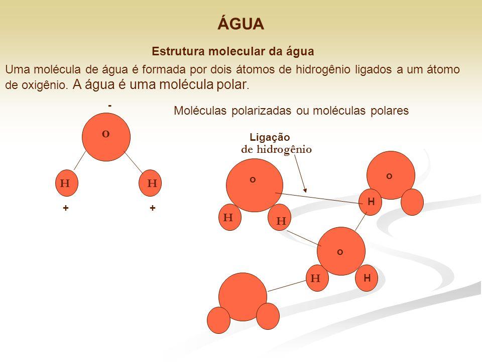 ÁGUA o Estrutura molecular da água