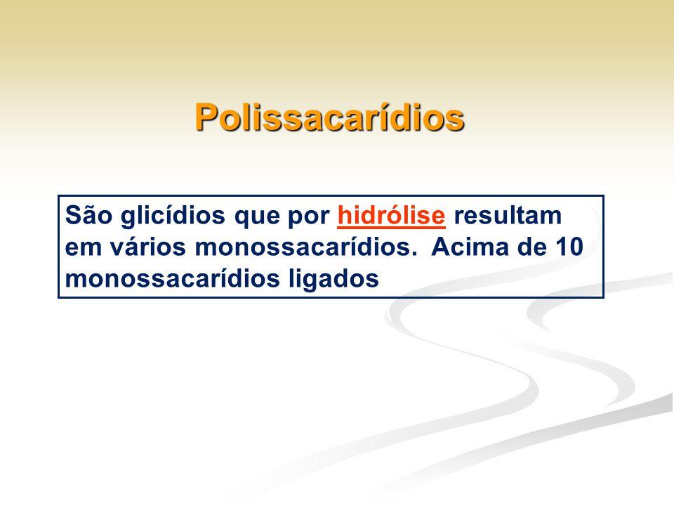 Polissacarídios São glicídios que por hidrólise resultam em vários monossacarídios.