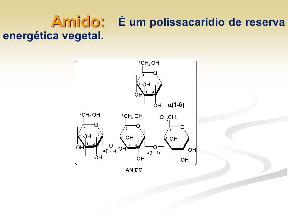 Amido: É um polissacarídio de reserva energética vegetal.