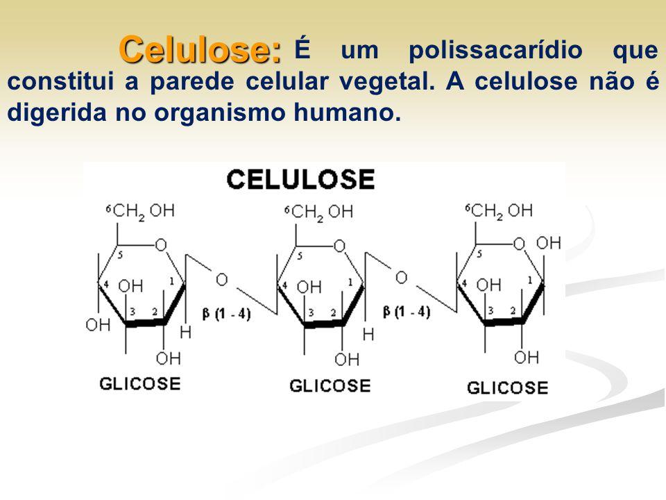 Celulose: É um polissacarídio que constitui a parede celular vegetal.