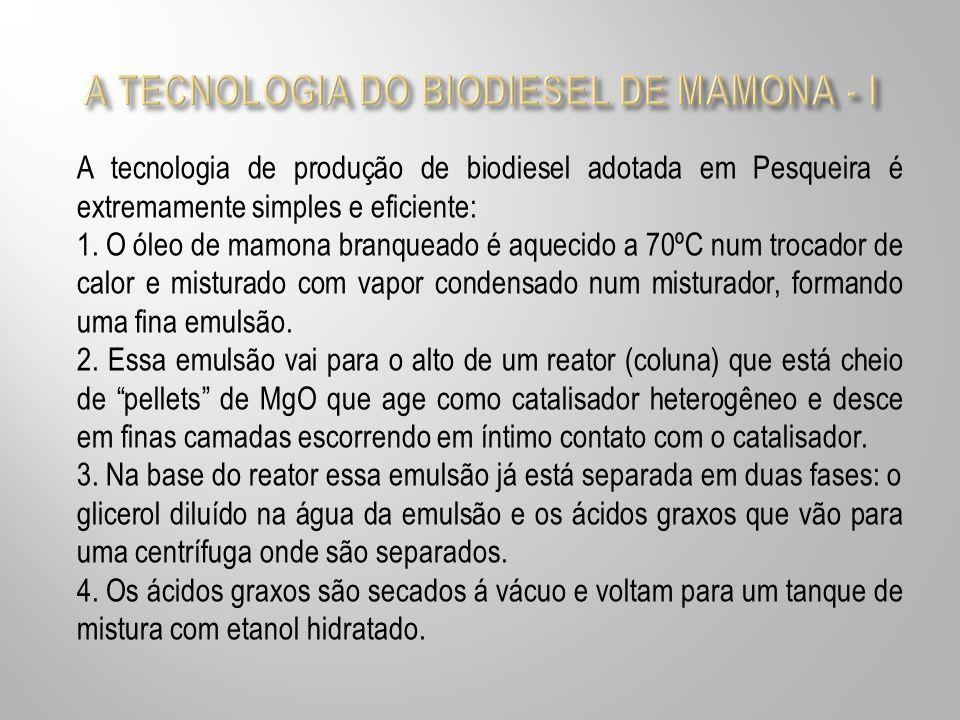 A TECNOLOGIA DO BIODIESEL DE MAMONA - I
