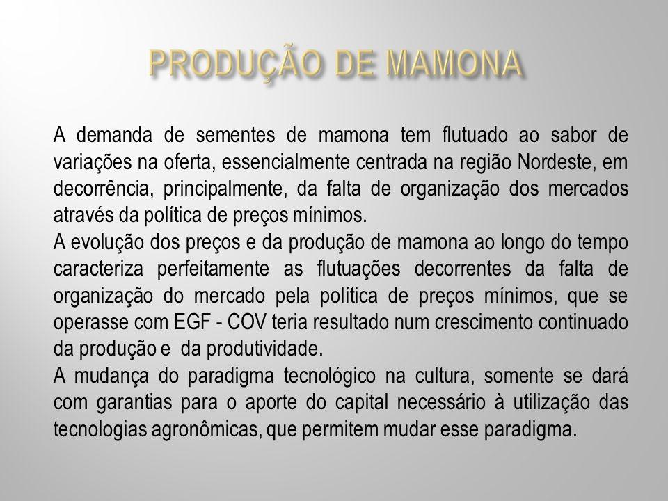 PRODUÇÃO DE MAMONA