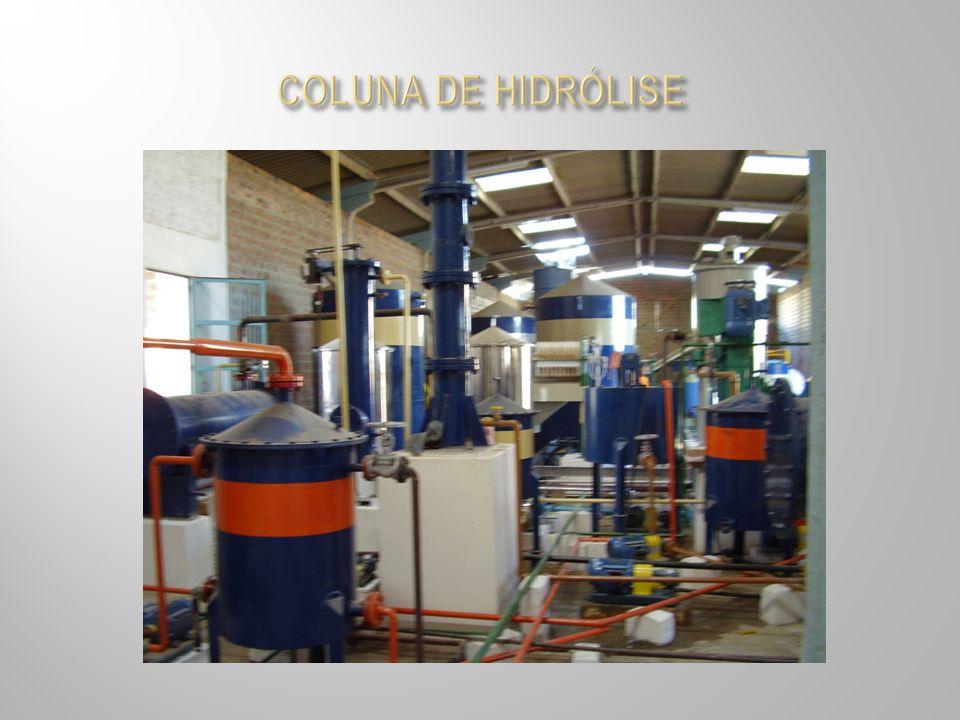COLUNA DE HIDRÓLISE