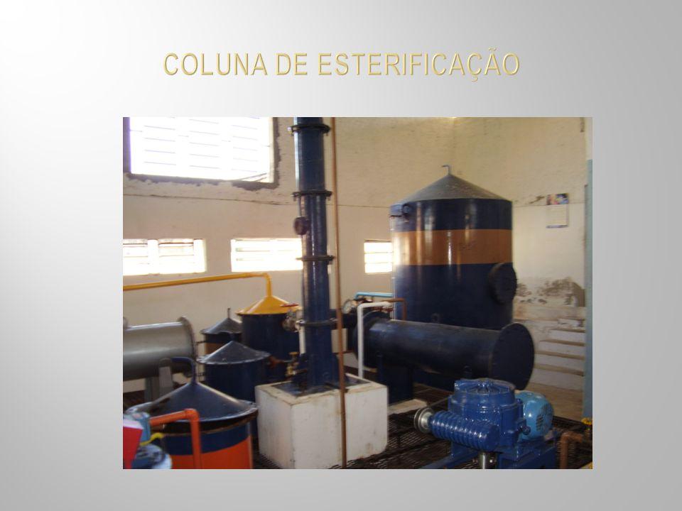 COLUNA DE ESTERIFICAÇÃO
