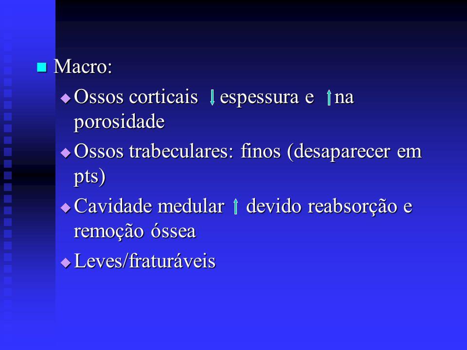 Macro: Ossos corticais espessura e na porosidade. Ossos trabeculares: finos (desaparecer em pts)