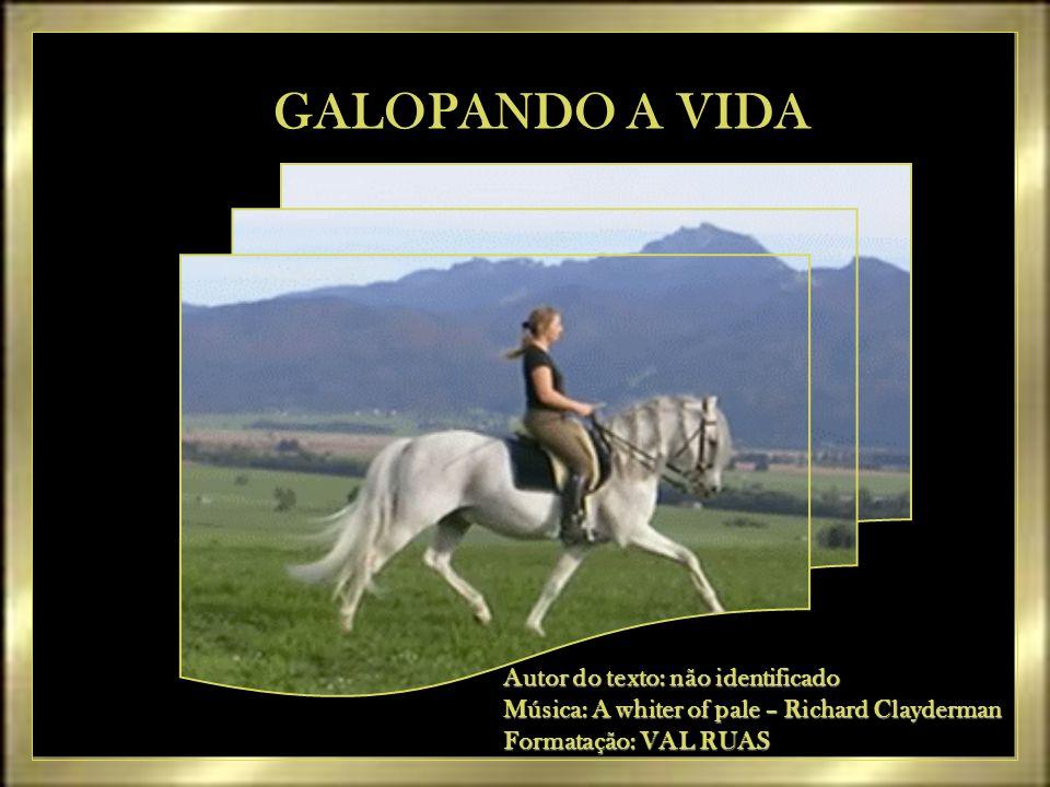 GALOPANDO A VIDA Autor do texto: não identificado
