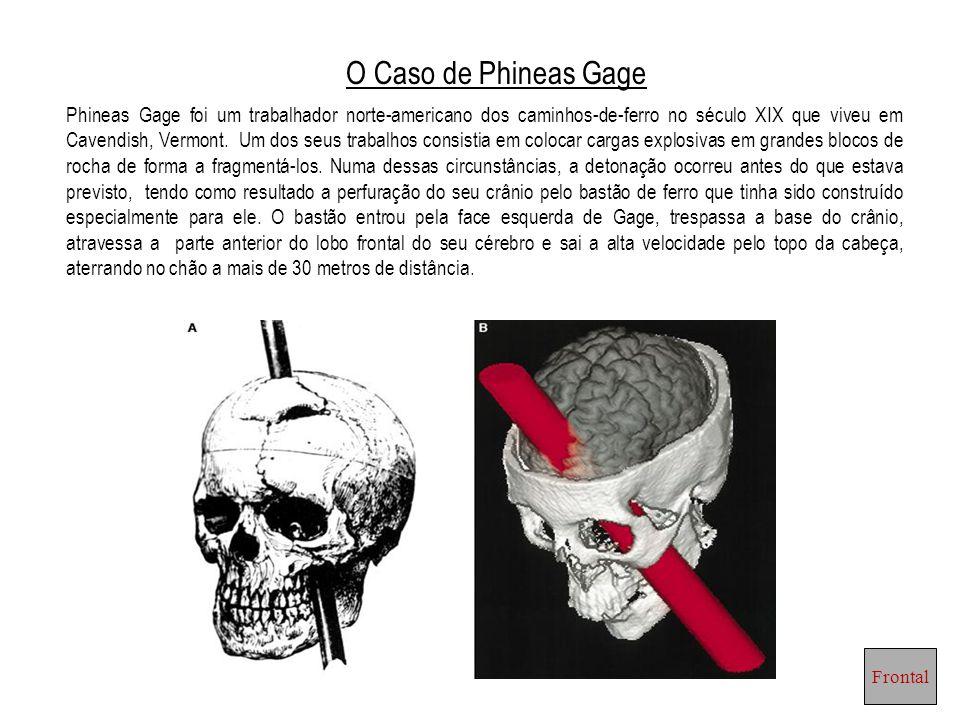O Caso de Phineas Gage