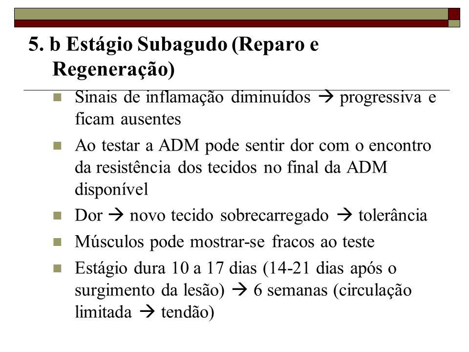 5. b Estágio Subagudo (Reparo e Regeneração)