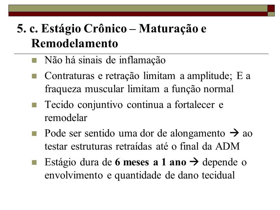 5. c. Estágio Crônico – Maturação e Remodelamento