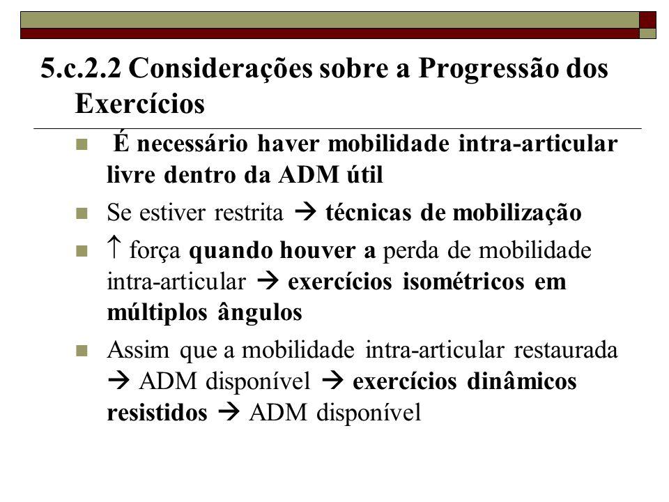 5.c.2.2 Considerações sobre a Progressão dos Exercícios