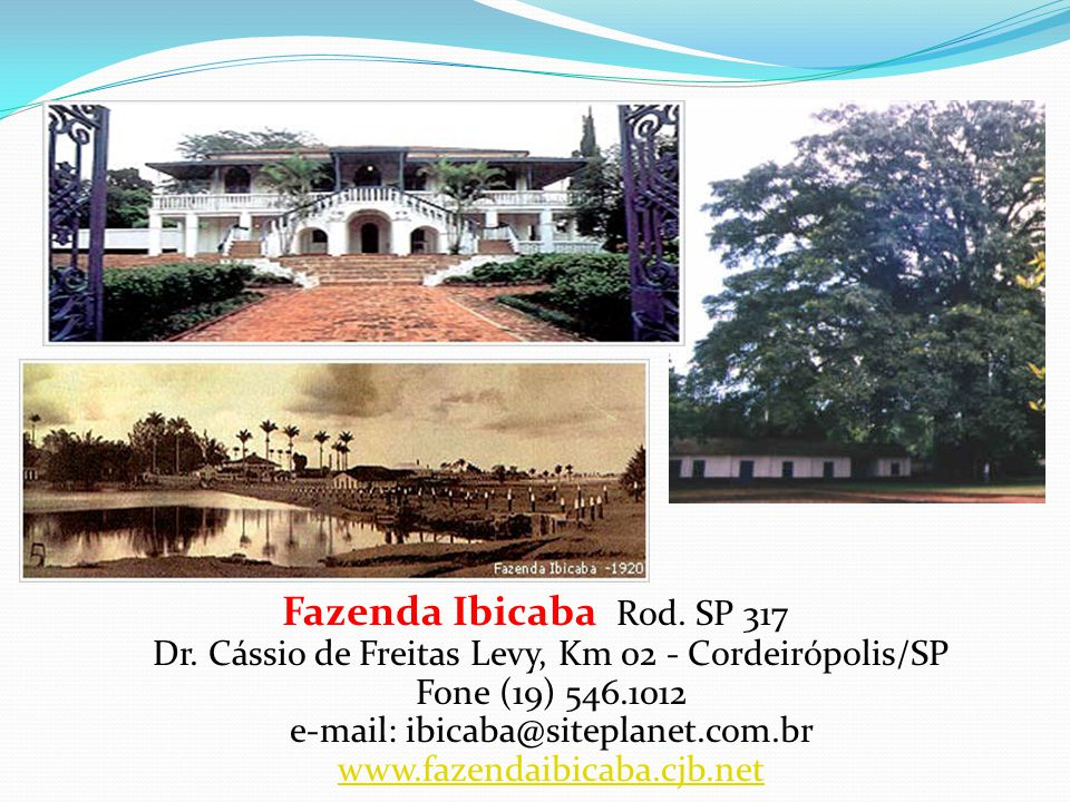 Fazenda Ibicaba Rod. SP 317 Dr