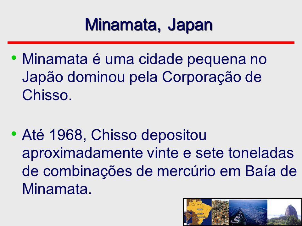 Minamata, Japan Minamata é uma cidade pequena no Japão dominou pela Corporação de Chisso.