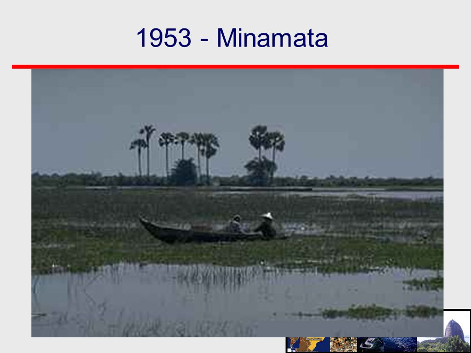 1953 - Minamata