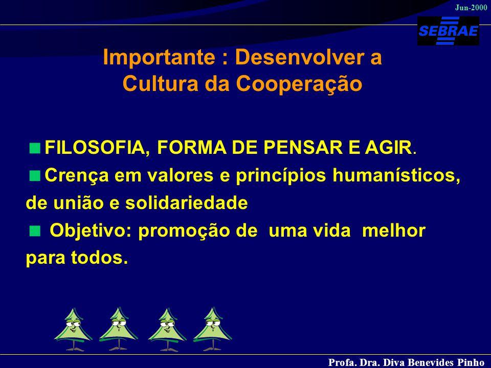 Importante : Desenvolver a Cultura da Cooperação