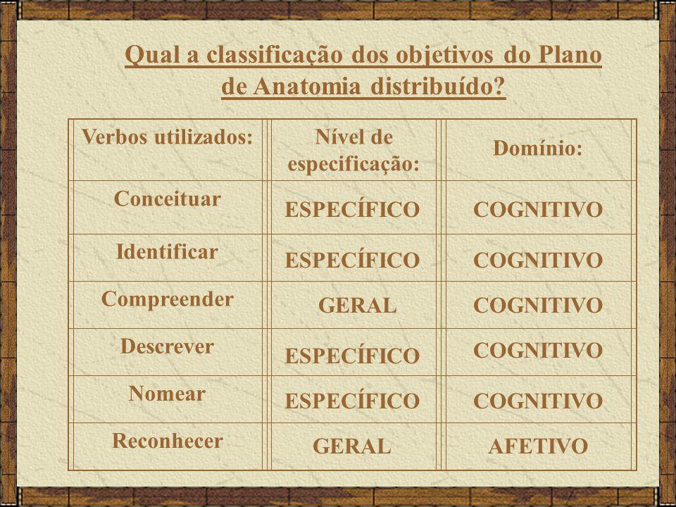 Qual a classificação dos objetivos do Plano de Anatomia distribuído