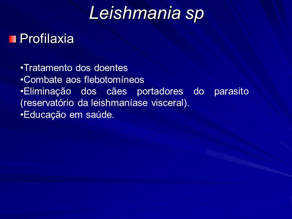 Leishmania sp Profilaxia Tratamento dos doentes