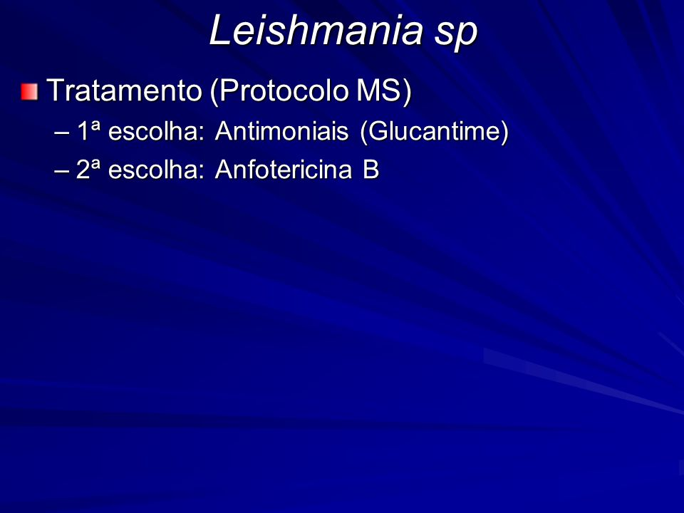 Leishmania sp Tratamento (Protocolo MS)