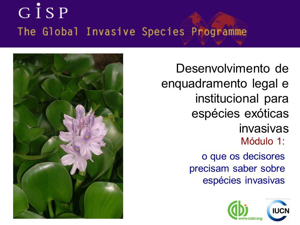 Desenvolvimento de enquadramento legal e institucional para espécies exóticas invasivas