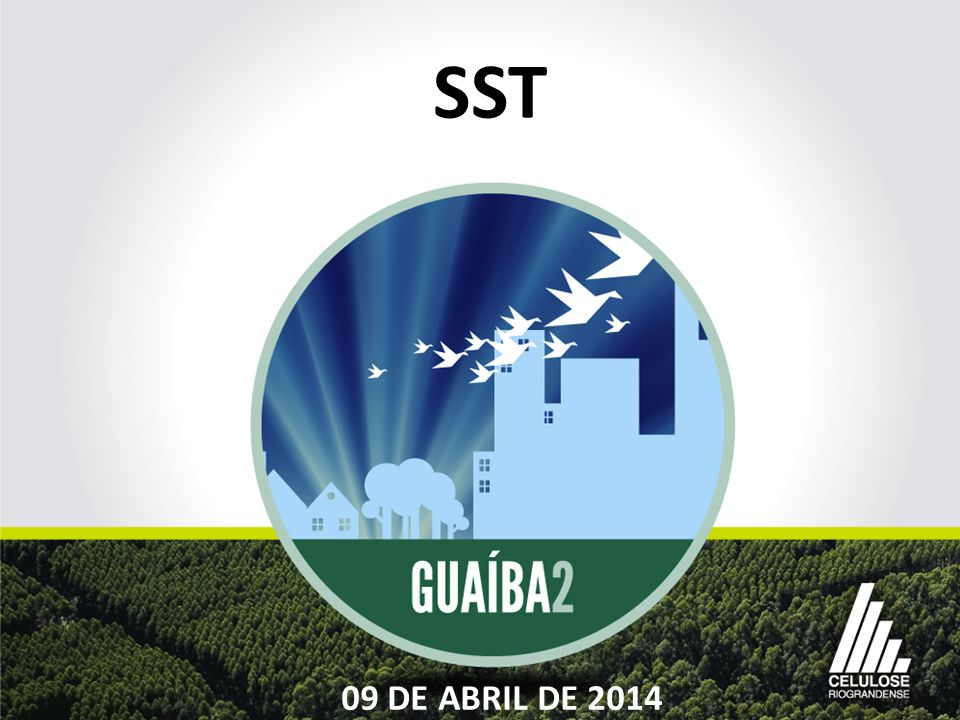 SST 09 DE ABRIL DE 2014