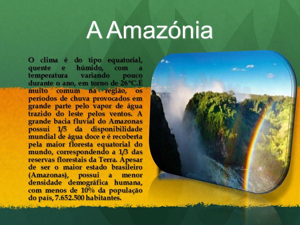 A Amazónia