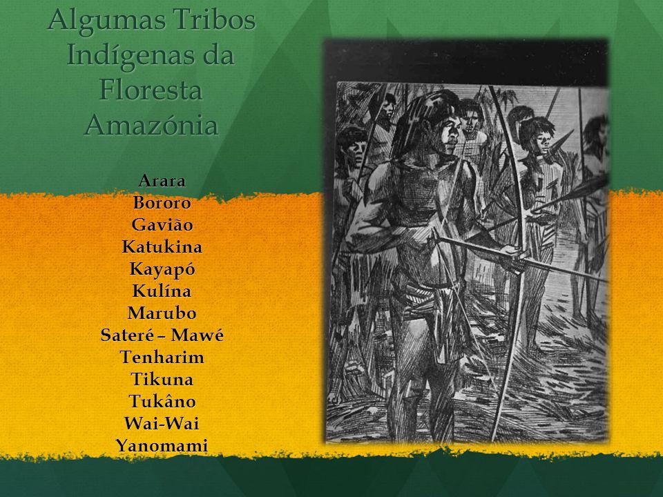 Algumas Tribos Indígenas da Floresta Amazónia
