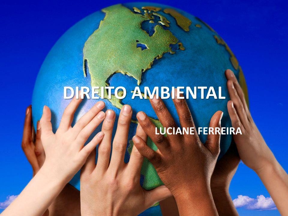 DIREITO AMBIENTAL LUCIANE FERREIRA