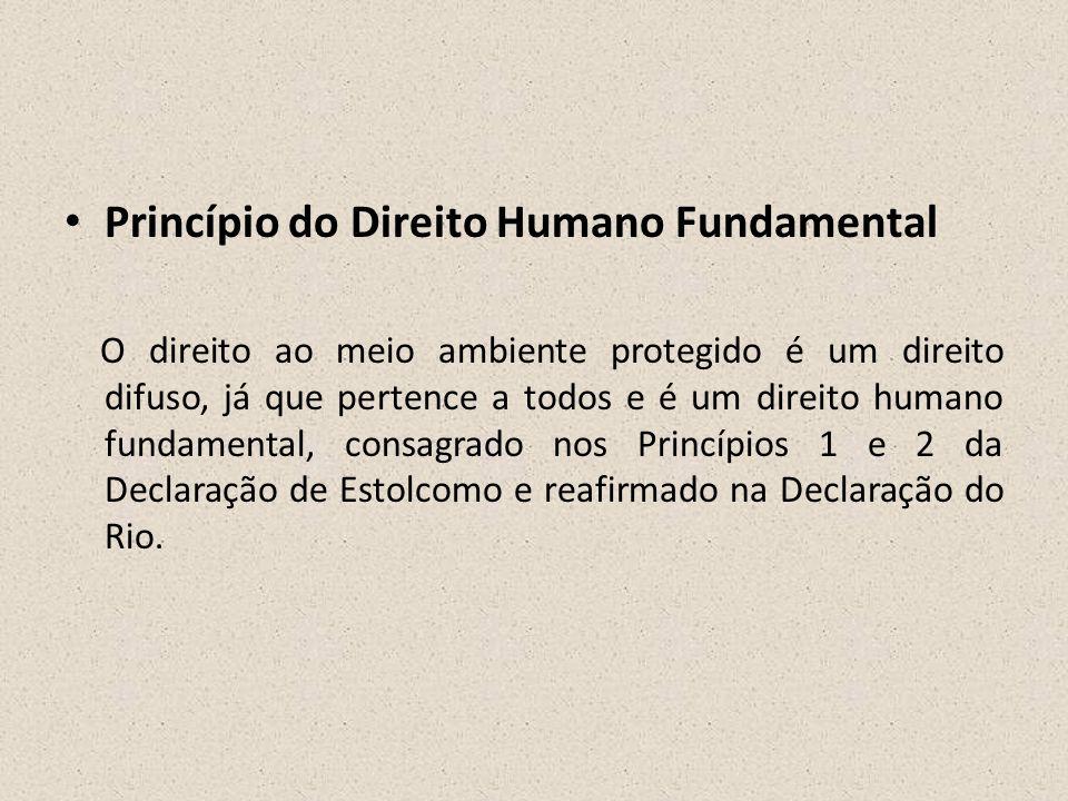 Princípio do Direito Humano Fundamental